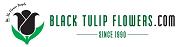 Black Tulip Flowers